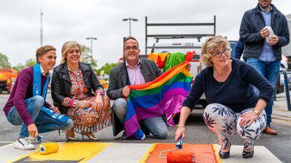 Mister Gay Belgium-kandidaat Dieter Celis schildert Truiens zebrapad in de kleuren van de regenboog: maar homofobe post van stadsmedewerker ontsiert LGTB-actie
