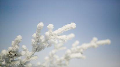 Winter blijft in het land: temperaturen stijgen niet boven vriespunt