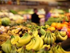 La banane, un fruit en voie d'extinction?