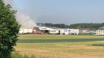 Zware brand in loods in Herent: geen gevaarlijke stoffen vrijgekomen