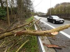 Les pompiers de Charleroi comptent les dégâts de la tempête Dennis