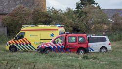 Koe die jongetje (7) doodde in Nederland viel doelbewust aan
