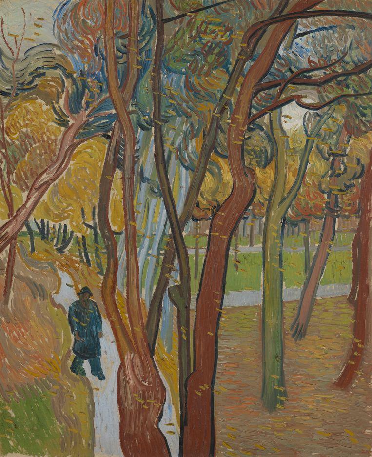 Vincent van Gogh: Tuin van de inrichting Saint-Paul ('Het vallen van de bladeren'), 73,8 x 60,8 cm. Beeld Van Gogh Museum (Vincent van Gogh Stichting)