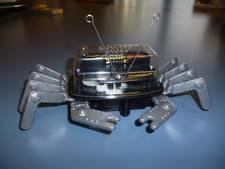 Een robotkrabje valt niet zomaar van tafel in Schijndel