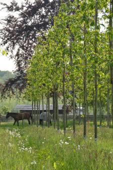 Van den Berk uit Rooi introduceert bio-boom