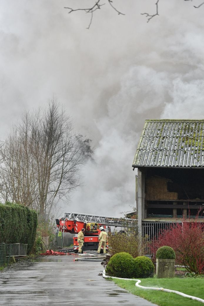 Verschillende brandweerposten zijn ter plaatse gesneld om de stalbrand te bestrijden.