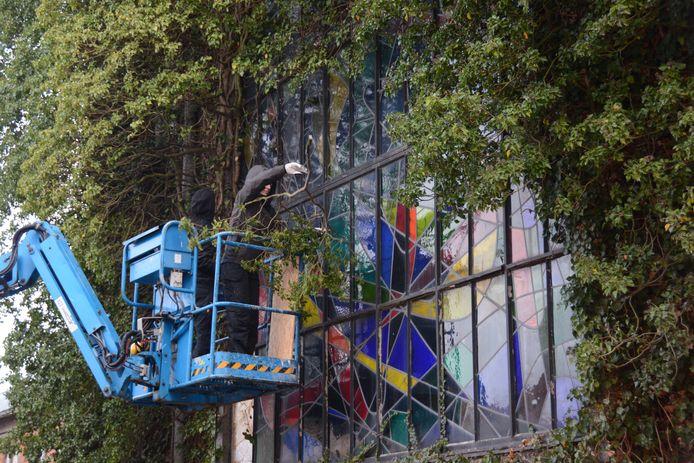 Medewerkers van Atelier Mestdagh moeten de klimop behoedzaam verwijderen en zullen vervolgens de panelen stuk voor stuk demonteren.