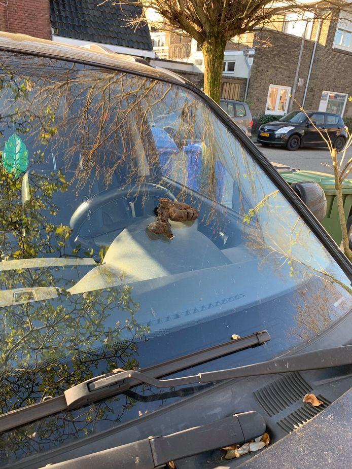 Dit trof Gerben uit Amersfoort vanochtend aan: een dikke hondendrol op zijn voorruit.