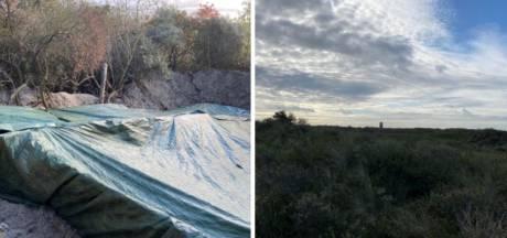 Actie tegen illegale bewoning: groot tentenkamp in duinen tussen Westland en Den Haag ontruimd