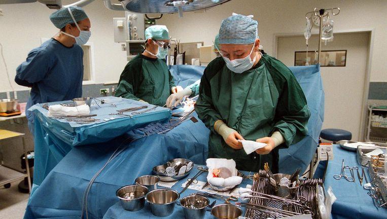Artsen in een Leids ziekenhuis houden een nier vochtig ter voorbereiding op een transplantatie. Beeld null