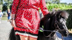 """Na de blindengeleidehond is er nu het eerste blindengeleidepaard in Europa: """"Dinky en ik zijn al beste vrienden"""""""