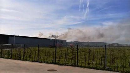 Felle dakbrand bij Werkhuizen Allemeersch: veertig zonnepanelen stuk en dak beschadigd