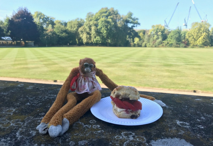 Harriet prend son goûter au Buckingham Palace.