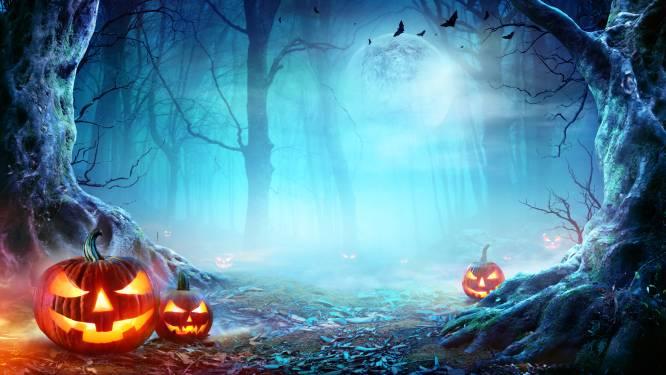 Griezelen en shoppen tijdens het Diestse Halloween weekend