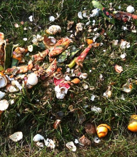 Boekel zamelt meeste gft-afval in; hoe zit het in jouw gemeente?