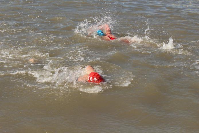 Thijmen van de Beek, de pas zeventienjarige zwemmer uit Koewacht, wint voor de eerste keer de havenwedstrijd Breskens.