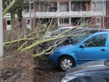 Schade in Hengelo door januaristorm ruim 100.000 euro
