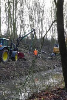Kapt Rijkswaterstaat stiekem bomen bij Amelisweerd?