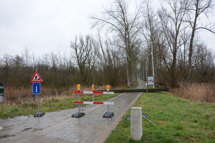 De dreef van de Verkortingsdijk is door de rooiwerken twee weken afgesloten.