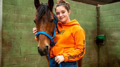 """Noémie na vier maanden herenigd met haar vermiste 'mirakelpony': """"Ik moest huilen van geluk"""""""