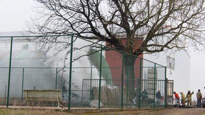 Brand slaat over van houtstapel op loods