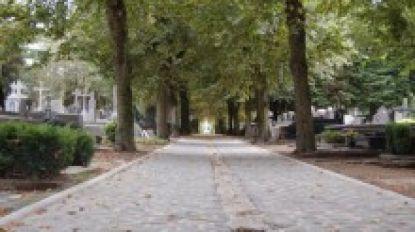 Werkstraffen voor drie jonge twintigers voor overval op begraafplaats