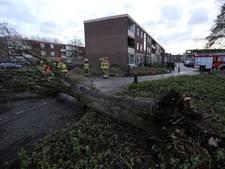 Brandweer: stormschade in en rond Arnhem valt mee