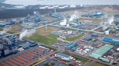 Tewerkstelling in Waaslandhaven blijft groeien maar schaarste aan grond voor bedrijven