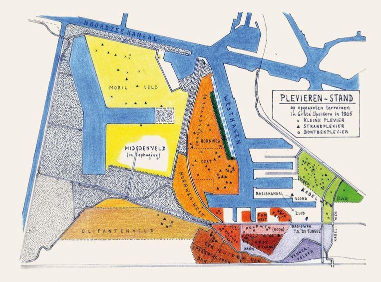 Schets uit het Plevieren-dagboek (1965) van Jacobus Walters Beeld -