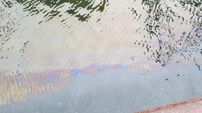 Opnieuw mazoutvervuiling in havengeul
