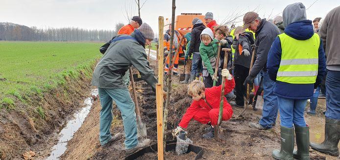 Aan de Dijkweg in Loenhout werden meer dan 100 bomen en 600 struiken aangeplant.