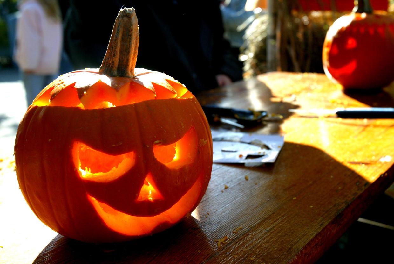 Wat Vieren Mensen Met Halloween.Met Chocolade Of Bloedworst 13 Verrassende Pompoenrecepten