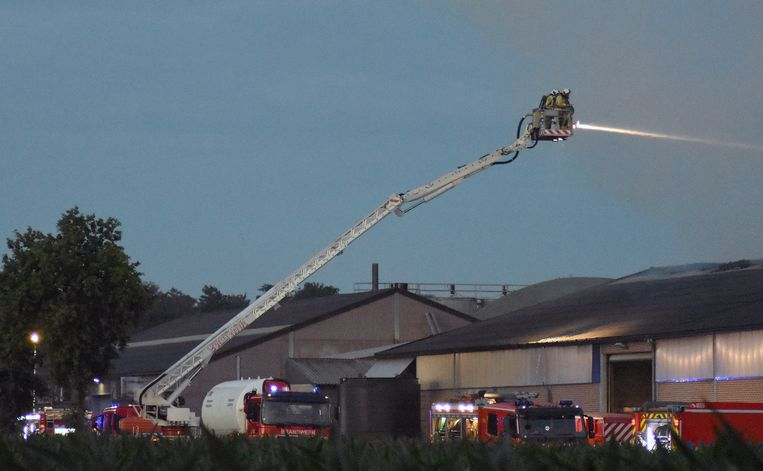 De brand ontstond wellicht in de drooginstallatie.
