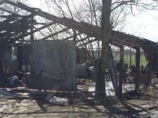 Xtc-lab ontploft in Poortvliet: 28 schapen overleden, duizenden liters drugsafval gevonden