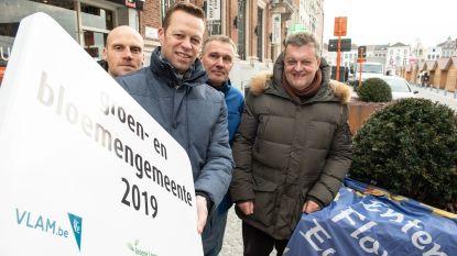 Oudenaarde is dé Vlaamse Bloemenstad