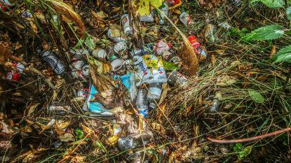 Vervuild park Doorniksewijk is opgeruimd