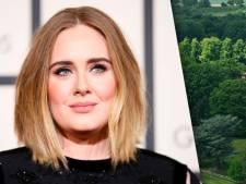 Adele verkoopt landgoed met miljoenenverlies om scheiding te bekostigen