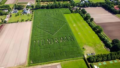 Mondriaan in Maisdoolhof Prinsenbeek