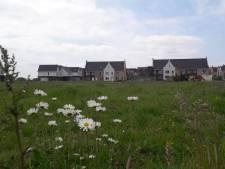 Bewoners Veerhaven: garageboxen passen niet in onze wijk