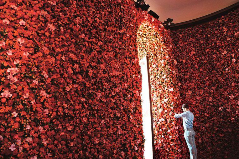 Met zijn werk voor de debuutshow van Raf Simons bij Dior, in 2012, zorgde Mark ervoor dat volledige bloemenmuren een wereldwijde trend werden.