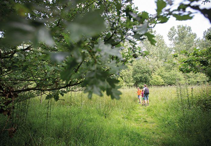 De dienst toerisme van Deinze stippelde een wandelzoektocht uit in Grammene.