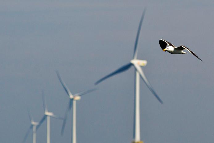 Shell zet de laatste jaren meer in op duurzaam. Hier het windmolenpark voor de kust van IJmuiden dat door Shell beheerd wordt met Nuon.