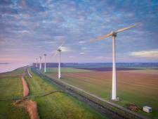 Bewoners maken zich zorgen om vogels bij turbines
