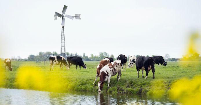 Kleine windmolens zijn toegestaan bij boerenbedrijven en op industrieterreinen, maar niet in de dorpskernen van de gemeente Staphorst