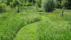 Meer dan veertig Belgische organisaties slaan de handen in elkaar voor biodiversiteit