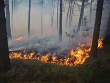 Waarschuwing voor natuurbranden in West-Brabant, code oranje