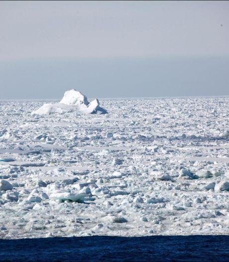 Découverte d'une empreinte de dinosaure en Antarctique