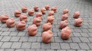 200 mensen willen in afvalcontainer gedumpte WOI-beeldjes 'adopteren'