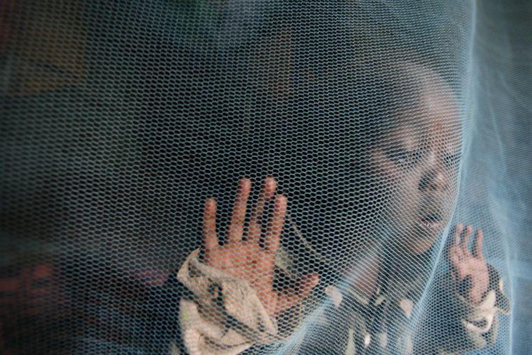 Een 3-jarige speelt onder een malarianet in Nairobi, Kenia. Malariamedicijn chloroquine remt mogelijk ook het coronavirus.  Beeld null