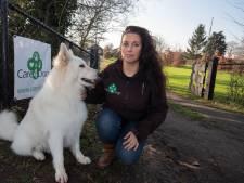 Buren in verzet tegen uitlaatservice in IJsselmuiden: 'Beter duizend koeien dan tien blaffende honden'